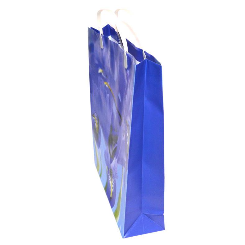 Пластиковый подарочный пакет